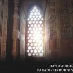 Paradise Is Burning (2010)